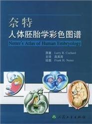 奈特人体胚胎学彩色图谱  高英茂 主译 2004年