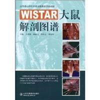 WISTAR大鼠解剖图谱_王增涛主编_2009年(彩图)