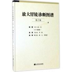 放大胃镜诊断图谱  第2版_(日)八木一芳著 吴永友主译_2017年(彩图)