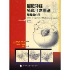 显微神经外科手术图谱 脑肿瘤分册_张建宁译_2007年