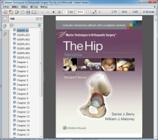 Master Techniques in Orthopaedic Surgery The Hip 3rd Edition