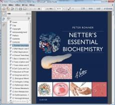 """Netter""""s Essential Biochemistry (Netter Basic Science)"""