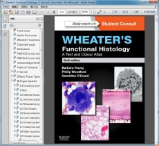 """Wheater""""s Functional Histology_ A Text and Colour Atlas  6th Edition"""