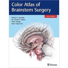 Color Atlas of Brainstem Surgery(脑干手术彩色图谱)带视频