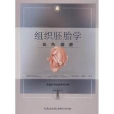 组织胚胎学彩色图谱_韩秋生,徐国成,翟效月主编_2018年(彩图)