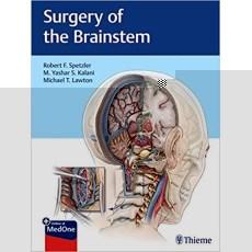 Surgery of the Brainstem(脑干手术)